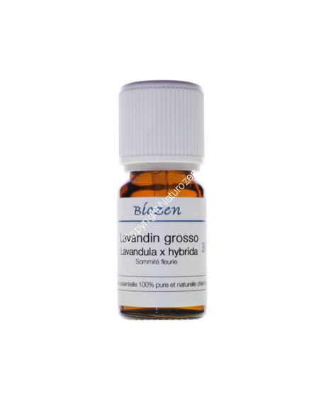 Lavandin Grosso Bio 10ml