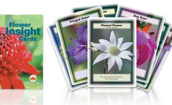 cartes fleurs du bush australien